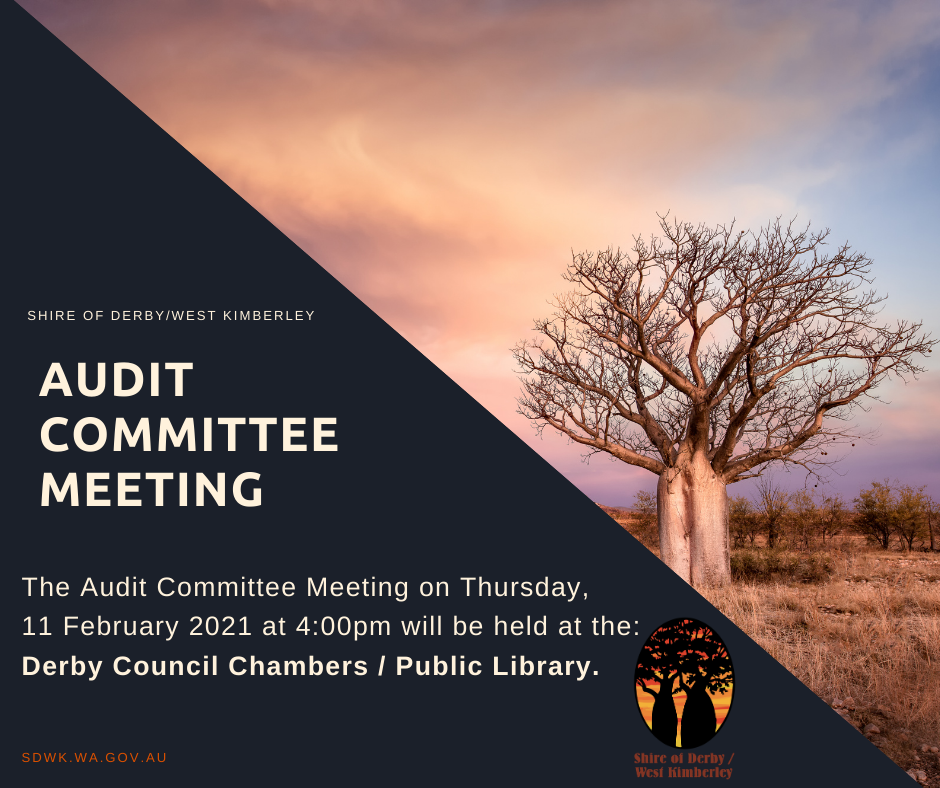 Audit Committee Meeting - 11 February 2021